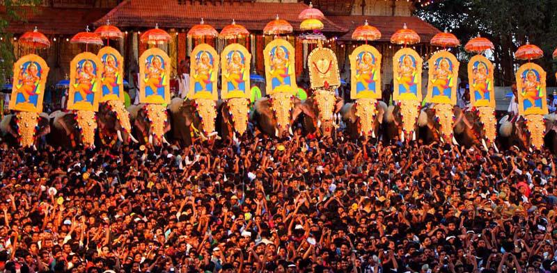 Elephant_Festival_pinkcityroyals01