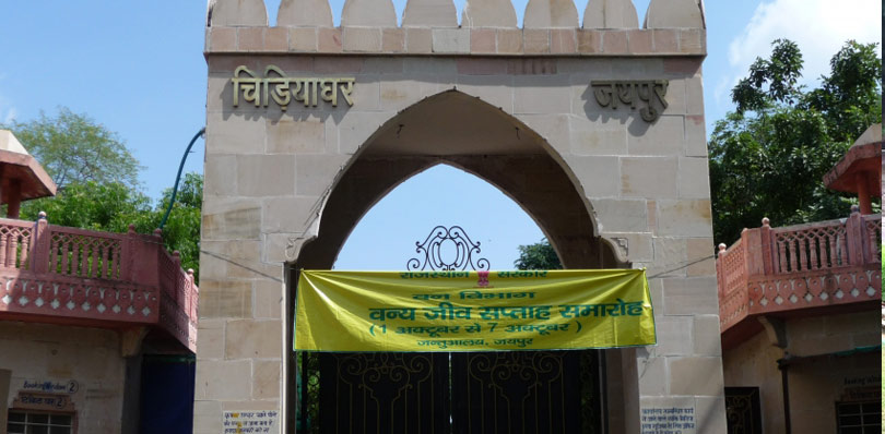 pinkcityroyals_jaipur-zoo-1
